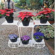 6-Tier-Stand-Planters