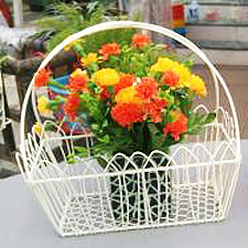 Wire-Basket-Planters