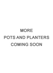 best-planters coming soon