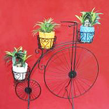 Big-Cycle-without-FRP-Planters