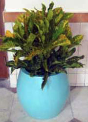 "19"" Round Planter (Blue) Dimensions H:19"", Bottom Diameter:14"", Mouth: 13"" Competely Hollow @ INR 300"